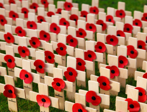 Remembrance Day- Your Memory.